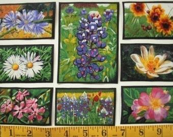 WILDFLOWERS Flowers Vanderpool 35 Fabric Appliques State Art RARE