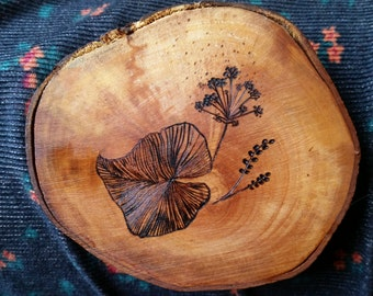 Botanical illustration burnt on ash wood