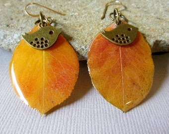 Real Pear Leaf and Brass Birds Earrings, Fall Leaf Earrings, Autumn Leaves Jewelry, Orange and Gold Leaf Earrings, Resin Leaves Jewelry