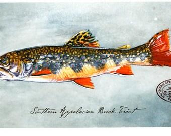 Appalachian Brook Trout Giclée Print
