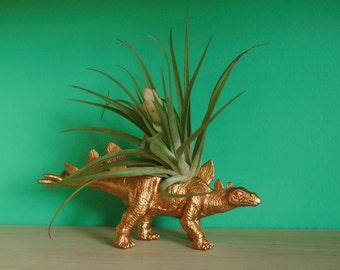 Gold Dinosaur Tillandsia Planter // Air Plant Dinosaur Pot // Stegosaurus