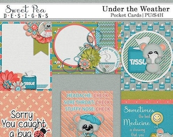 On sale 50% off Under the Weather Pocket Cards