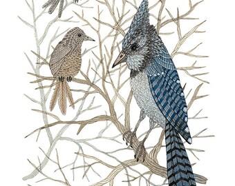 LARGE Blue Jay Print, giclee art print, bird art, blue birds, watercolor bird art, winter bird art, 13 x 19