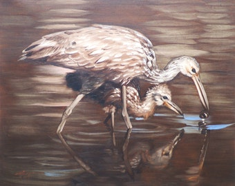 Limpkins oil on canvas 16x20 wildlife painting by RUSTY RUST / L-130