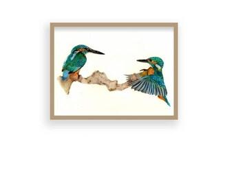 Humming A Song - Original Hand-Drawn Humming Bird/Nature Print (Not Framed or Mounted)