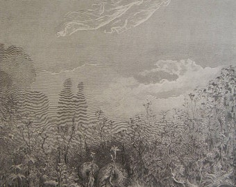 """Gustave Gore (1832-1883) Engraving from """"Purgatory & Paradise"""" by Dante"""