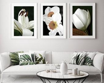 Flower Wall Art Set of 3 Prints Fine Art Photography Prints Large Wall Art Prints Printable Wall Art Download Digital Prints Magnolia Lily