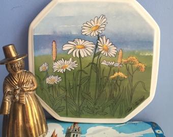 Arabia Finland Ceramic Wall Plate Oxeye Daisy Päivänkakkara by Toivo G. Utriainen Original Box Flowers Scandinavian Octogonal maakuntakukat