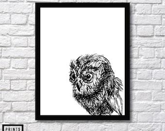 Owl Art - Wall Art Print - Owl Art Sketch - Owl Illustration Wall Art - Owl Sketch - Owl Animal Art - Owl Wall art - Owl Art - Owl Drawing