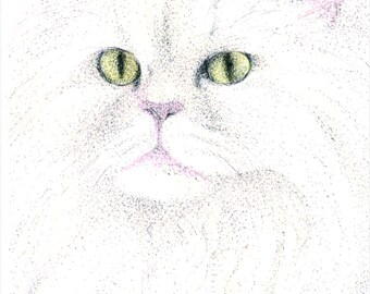 ATC ACEO Pompfrey White Persian Cat Art Card