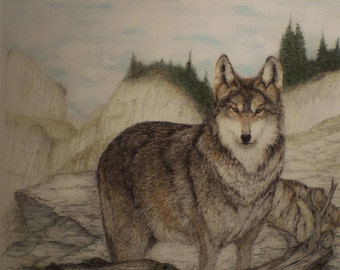 "ACEO 2.5"" x 3.5"" Wolf Drawing Wildlife Miniature Picture Art Trading Card"