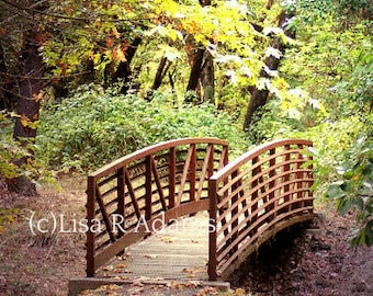 Christian Note Cards Bible Verse Forest Bridge from Original Photo Free Shipping