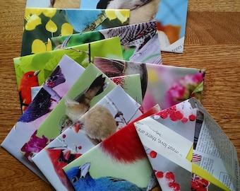 12 pack Homemade bird envelopes 6 1/2 by 4 1/2