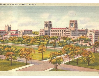 Vintage 1920's -1940's  Linen Postcard Unused University of Chicago Campus, Chicago, IL