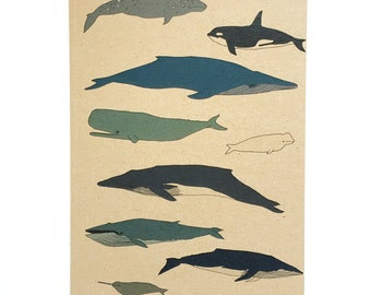 Whales A5 plain notebook - wildlife / nature / marine / ocean illustrated gift - narwhal , blue whale , orca - recycled eco friendly