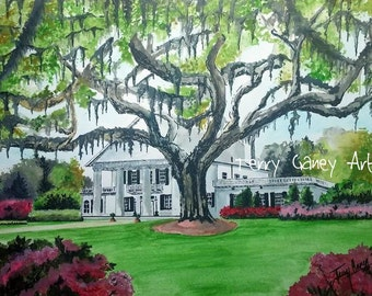 Orton Plantation (Reproduced Art Print of Original Painting, Chromogenic Print, C-Print)