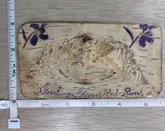Vintage Old Tree Bark Card Used