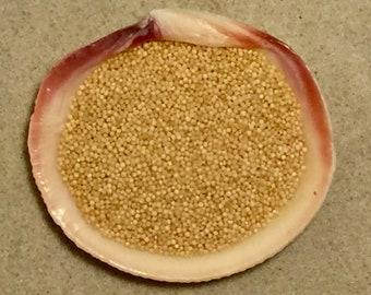 Organic Amaranth Seeds ~ Hermit Crab Food