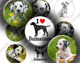 "Digital Bottle Cap Collage Sheet - Love Dalmations (964) - 1"" Digital Bottle Cap Images"