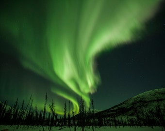 The Aurora Borealis Streaks the Sky. Northern Lights Fine Art Print/Poster. (003664)