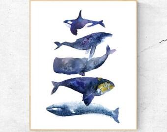 Group of Whales Watercolour Fine Art Print, Coastal Decor, Nautical Decor, Wall Poster, Beach House Printable Digital Download