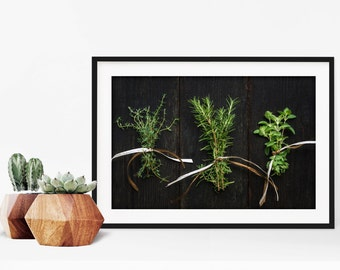 herbs // food photography print // kitchen decor // dining room // minimalist art print // rustic farmhouse wall art