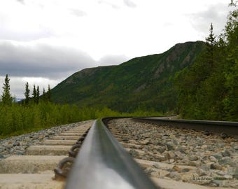 Tracks at the Village, Fine Art Photograph on Gallery-Wrapped Canvas, or High Gloss Metal, Ready to Hang Wall Art