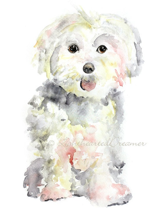 maltese painting maltese painting dog print maltese puppy print kids wall 2062