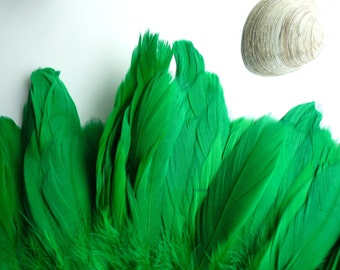 GOOSE COQUILLE FEATHERS ,  Two Tone Kelly Green  /   814