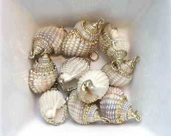 Pendant shell beige and gold 20 / 25mm