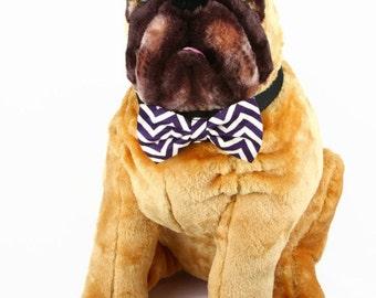 Bow Tie, Dog Bow Tie, Pet Bow Tie, Pet Neckwear, AnnabelsAccessories, Pet Accessories, Pet Neck Tie, Dog Clothing, Eggplant Chevron