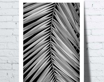 Shows Journal of palm black and white, tropical wall art, tropical, palm leaf, modern décor