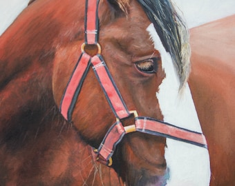 A Cornish Horse (oil painting, 2016)