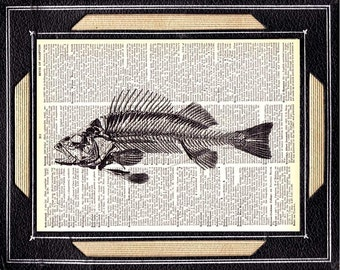FISH SKELETON art print wall decor dead fish anatomy marine science nautical black white upcycled vintage dictionary book page 5x7, 8x10