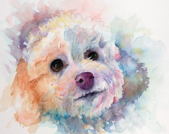 bichon,  white bichon , bichon painting, bichon portrait, havanese, dog art, dog memorial, pet loss gift, pet memorial, custom painting