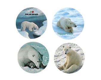 Polar Bear  Magnets:  4 Polar Bears  for your home, your collection,  or to give as a unique gift