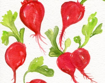 Radishes Watercolors Paintings Original, Vegetables kitchen decor. 5 x 7 watercolor of Bunch of red Radishes