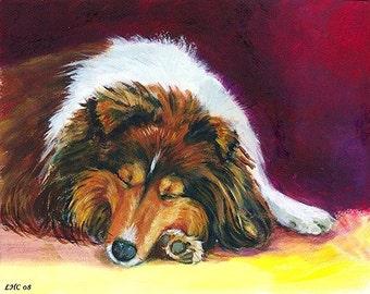 Shetland Sheepdog Sheltie Snoozer Giclee Fine Art Print size 8x10 on Somerset Velvet Paper