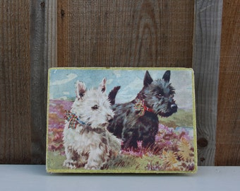 Vintage Dog Box