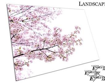 Sakura tree CHERRY BLOSSOM pink flowers Poster Print X1052