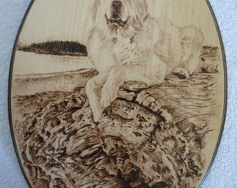 Pet Portrait Solid Maple Wood Burned Plaque Made to Order 8 x 12 inch by Shannon Ivins Pigatopia