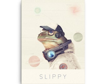 Slippy Canvas Print /  Real Star Fox Art / Nintendo Gift / Starfox Canvas Print / Video Game Decor / Nintendo Canvas Video Game, Geek Art
