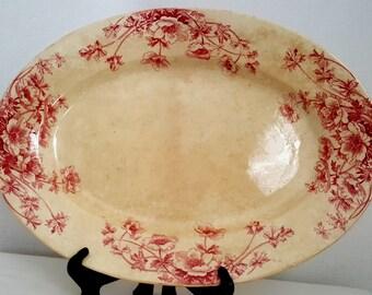 Vintage Plate Of Porcelaine Opaque De Gien/Ane Mones/France