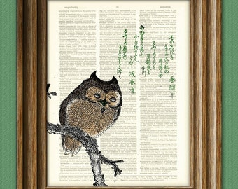 Owl Art Print Japanese OWL on a Magnolia tree branch illustration beautifully upcycled dictionary page book art print 2