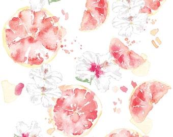 Grapefruit and white hibiscus