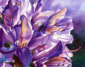 Print - Rhododendrons watercolor painting by Jacqueline Tribble - Giclee fine art print - Purple violet flowers, rhodies, flower print