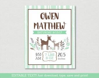Cute Woodland Deer Baby Birth Stats Wall Art / Deer Nursery Wall Art / Woodland Deer / Mint Green / Instant Download Editable PDF A175