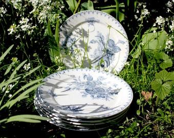 SarregemuineFaiance: 'Flores' U & C, 6 plates, antique