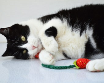 Cat Toy Catnip,  Crochet Strawberry (set of 2)
