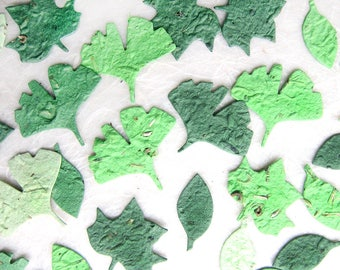 100 Plantable Ginkgo Leaves Confetti Flower Seed Paper Spring Wedding Favors - Tulip Tree Leaf Elm Leaf - Greenery